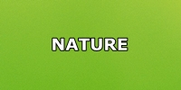 nature green button