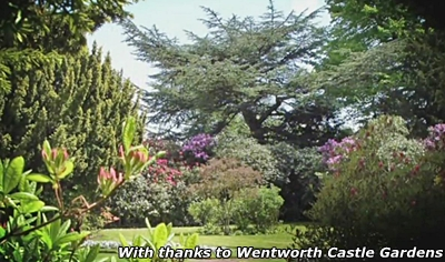 wentworth castle gardens picture